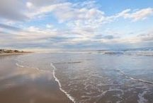 Beach Vacation / by Patty Cherolis