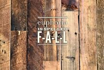 euphoria is spelled f-a-l-l