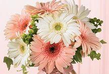 Gorgeous flowers/arrangements / Various flowers and arrangements. / by Karen Greenwood