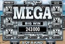Microgaming Big Win Pictures