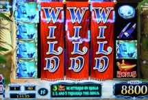 Live Casino Big Win Pictures