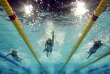 Swimming / by Hannah King