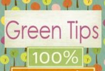 Green Tips / Simple Green Tips including recipes for non-toxic cleaning. More can be found under the board titled  Reduce~Reuse~Recyle. http://www.changes4charlie.com/going-green/green-tips/ / by Charlie