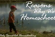 Homeschooling! / by Alejandra Bernardez Duran