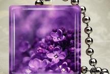 #PurpleForEpilepsy / by Gina St. Aubin