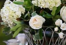Flowers & Beautiful things
