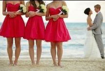 Wedding and Events / by Amanda Daniels