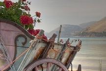 Bohemian Gypsie / by Judy Jones