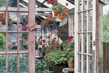 Orangerie ~ Conservatory... / Also: ~ Sun Rooms ~ Green Houses  ~ Garden Rooms ~ / by Ar Families