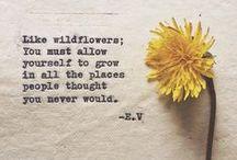 botany love / inspiration and information