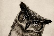 owl totem / emblematic of change, deep wisdom, the ability to see what is hidden and intuition