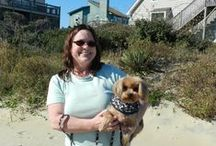 Dog Friendly Outer Banks / This board is all about dogs. Dog on the beach, Dogs having Fun, staying safe. It also covers which Atlantic Realty Outer Banks rental homes and restaurants welcome dogs. Have fun with your Furbaby.