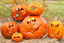 Halloween / Welcome, please pin all that you enjoy! / by Julie McCormick