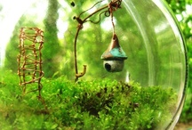 Miniature Gardens / by Pat Chung