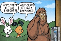 Funny / by Tasha Halldorson