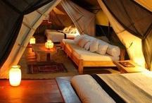 Cool Room Ideas / by Virginia Harvey