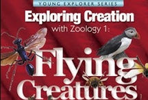 "Homeschool Science: Flying Creatures of the Fifth Day / Photos and links to our Science studies using Apologia Sciences' ""Exploring Creation Through Zoology 1: Flying Creatures of the Fifth Day"""