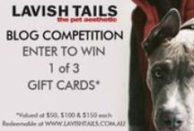 Lavish Tails Competitions / Contains details of the latest Lavish Tails competitions for great prizes to be won..