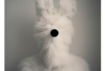 Animals costume