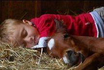 Cowboys & Horses / by Glenda Cranage Ledbetter