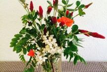 Flowers Inspiration / by Patri Navarro