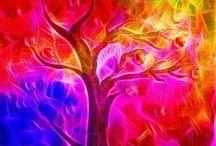 Beautiful Bright Colors / by Glenda Cranage Ledbetter