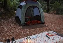Camping / by Jennifer Lawson