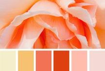 Color Palettes / Color inspiration for home decor, jewelry making, fashion, knitting & crochet projects, quilting, weddings, showers, parties, cakes, art, blog & web design, and so much more.