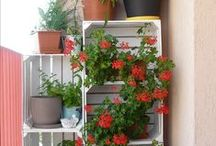 Dekoracje do domu i na balkon