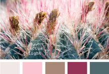 Color Inspiration / Color theories / by Bree Craft