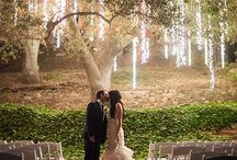 Wedding Bliss / by Brittany Penland