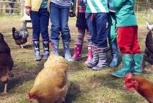 Kids Fashion & Style / Joules clothing, Barbour jackets, Hunter wellingtons and more lifestyle clothing and footwear for children is available at Country House Outdoor: http://bit.ly/1f6c3EI