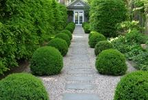 Gardening / by Jeanne Bay