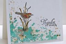 Stampin Up Birds and Butterflys / by Deborah Newman