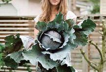earth + plant + farm