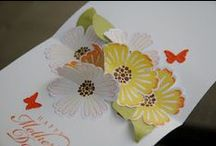 Stampin Up Mixed Bunch / Cards made with Mixed Bunch and or Blossom Punch / by Deborah Newman