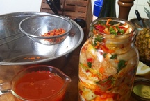 Food - Fermentation and Live Foods / Good for your gut, tasty in your mouth
