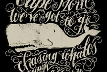 Type & Design / by Heidi Nieling (Speckless)