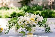 WEDDING - Tips & Tricks / Wedding planning tips from the experts of the industry..