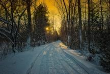 Winter Scenes / by Chris Lockwood