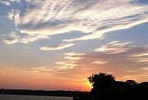 Sky Views / All my sky views. Clouds and all / by Joyce Sullivan