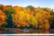 Fall Scenes / by Chris Lockwood