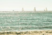 Cape cod  / by Stacey