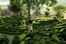Gardenology / Inspiration for what my gardens will look like one day soon!!!