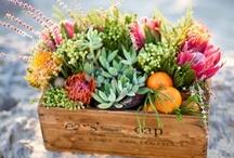 Earthy and Organic Wedding