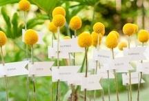 Mellow Yellow Wedding