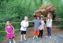 Kids Love Dinos! / by Pintasaurus by Field Station: Dinosaurs