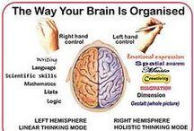 Left Hand Right Brain