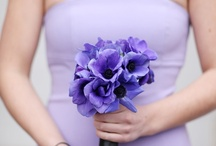 Color: Purple / by WeddingMoons