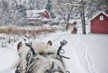 Christmas / by Sherian McCoy-Oakley